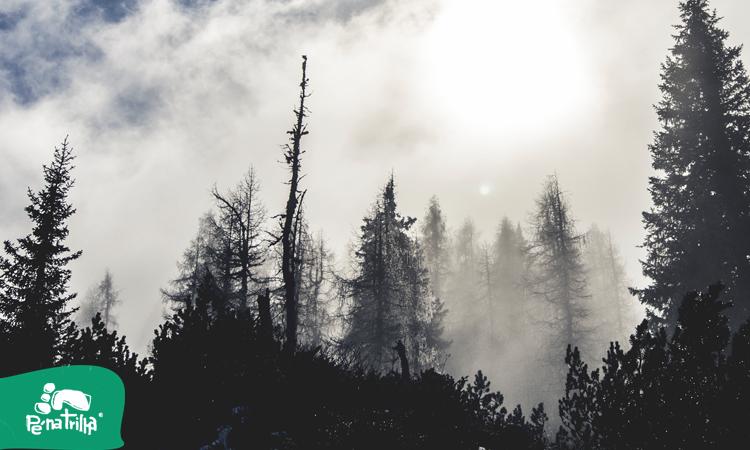 Inverno Nórdico