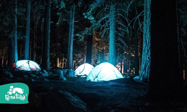Camping Selvagem